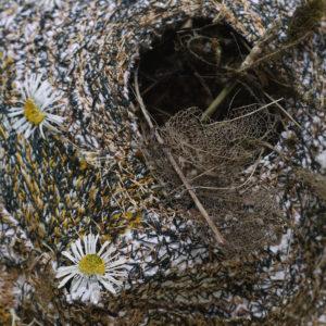 Susan Syddall.Nests.